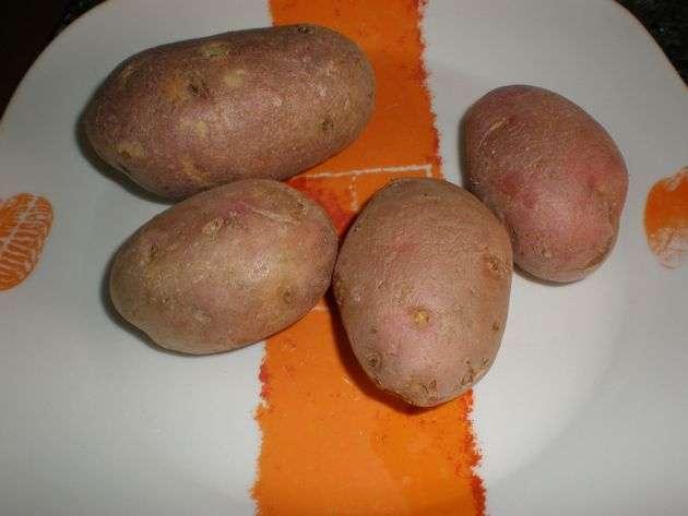 0nku - Judías blancas, con morcilla de cebolla